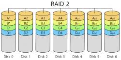 RAID 2.png